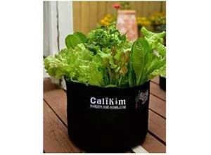 15-Gallon Smart Pot