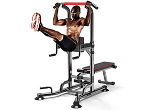 Power Tower Dip Station Dumbbell Bench 330lbs