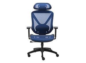 FlexFit Dexley Mesh Task Chair
