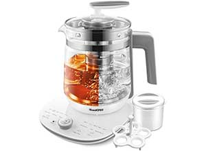 Electric Kettle Glass Programmable Tea Pot