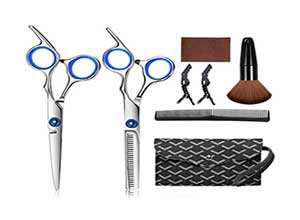 Professional Hairdressing Shears Set