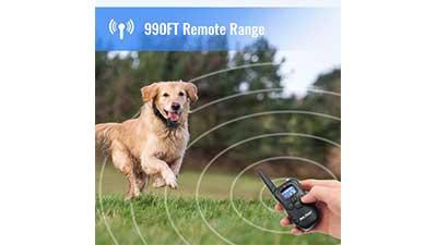 Petrainer PET998DR1 Dog Training Collar