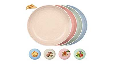 Dinner Plates 8.9 Inch Sets for 4
