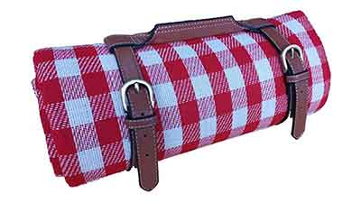 Extra Large Picnic Blanket Waterproof Camping Mat